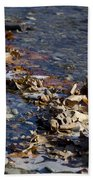 Beach With Stones Beach Towel