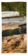 Beached Beach Towel by Bill Wakeley