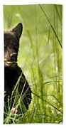 Bear Cub In Clover Beach Towel