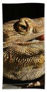 Bearded Dragon Beach Towel