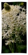 Beargrass Bloom Beach Towel