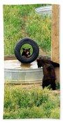 Bears At Play Beach Towel