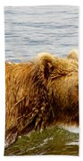 Bear's Eye View Of Swimming Grizzly In Moraine River In Katmai Beach Towel