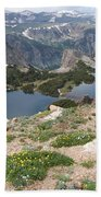 Beartooth Wildflowers Beach Towel