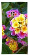 Beaucoup Of Blooms Beach Towel