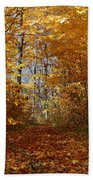 Beautiful Autumn Sanctuary Beach Towel