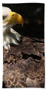 Beautiful Bald Eagle Beach Towel