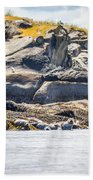 Seals And Rock Scupltures Beach Towel