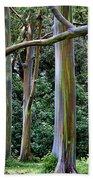 Beautiful Eucalyptus Beach Towel