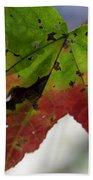 Beautiful Maple Leaf Beach Towel