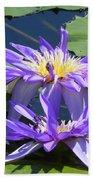 Beautiful Purple Lilies Beach Towel
