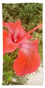 Beautiful Red Hibiscus Flower With Garden Background Beach Towel