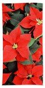 Beautiful Red Poinsettia Christmas Flowers Beach Towel