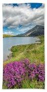 Beautiful Wales Beach Towel by Adrian Evans