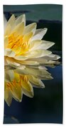 Beautiful Water Lily Reflection Beach Towel