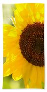 Beauty Beheld - Sunflower Beach Towel