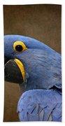 Beauty Is An Enchanted Soul - Hyacinth Macaw - Anodorhynchus Hyacinthinus Beach Sheet