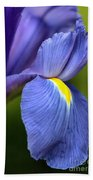 Beauty Of Iris Beach Towel