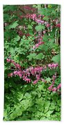 Bed Of Bleeding Hearts Beach Towel