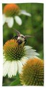 Bee 7 Beach Sheet