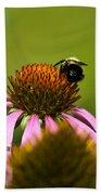 Bee And Echinacea Flower Beach Towel