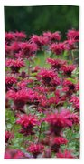 Bee Balm Bounty Beach Towel