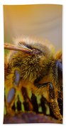 Bee Covered In Pollen Beach Towel