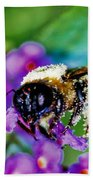 Super Bee Covered With Pollen Beach Towel