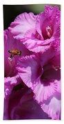 Bee In Pink Gladiolus Beach Towel