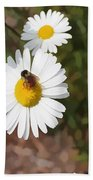 Bee On A Daisy Beach Towel