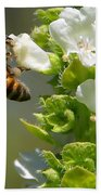 Bee On Basil Beach Towel