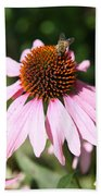 Bee On Coneflower Beach Towel