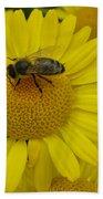 Bee On Daisy Beach Towel