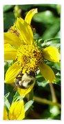 Bee On Flower Beach Sheet