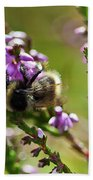 Bee On Heather Beach Towel
