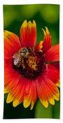 Bee On Orange Flower Beach Towel