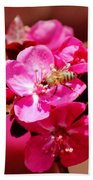 Bee On Pink Blossoms 031015ab Beach Towel