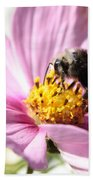 Bee On Pink Cosmos Beach Towel