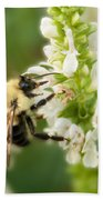 'bee'autiful Morning Beach Towel
