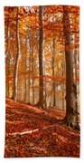 Beech Forest Beach Towel