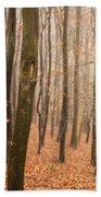Beech Wood In Autumn Beach Sheet