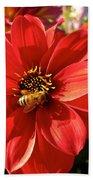 Bee's Dahlia Delight Beach Towel