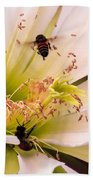 Bees In Blossom Beach Towel