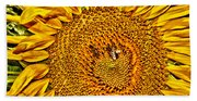 Bees On Sunflower Hdr Beach Towel