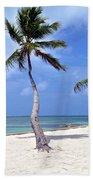 Beautiful Belize Palms Beach Towel