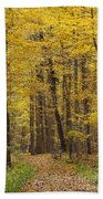 Bench In Fall Color Beach Towel