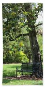 Bench Under The Magnolia Tree Beach Towel