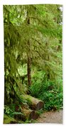 Bend In The Rainforest Beach Towel
