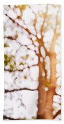 Beneath A Tree 14 5286 Triptych Set 1 Of 3 Beach Towel by Ulrich Schade