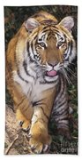 Bengal Tiger By Tree Endangered Species Wildlife Rescue Beach Towel